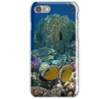 The Exquisite Butterflyfish Couple in the Red Sea iPhone Case/Skin