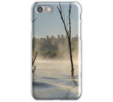 The Danube Delta iPhone Case/Skin