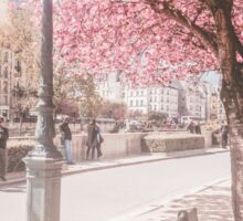 Paris in Spring Near Notre Dame Cathedral Sticker
