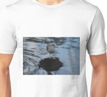 Black Headed Gull Unisex T-Shirt