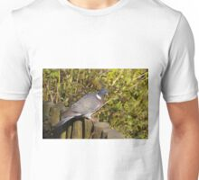Wood Pigeon Unisex T-Shirt