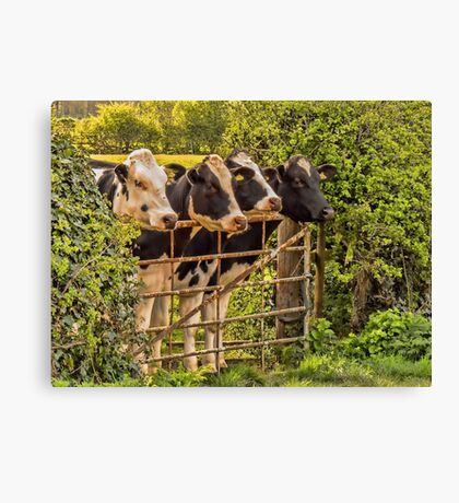 #12 Stand to attention Canvas Print