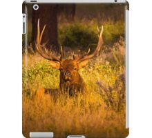 Rest And Relaxation iPad Case/Skin