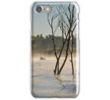Morning fog in Danube Delta iPhone Case/Skin