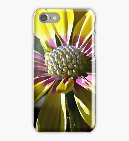 Blue Eyed Daisy iPhone Case/Skin