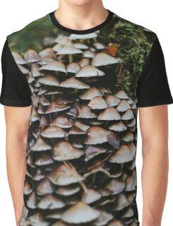 Tree fungus on tree stomp Graphic T-Shirt