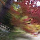tourbillon d'automne by yvesrossetti