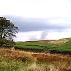 Yorkshire Hills, UK by GeorgeOne