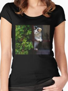Curious Kitty! Women's Fitted Scoop T-Shirt