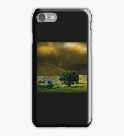 4329 iPhone Case/Skin