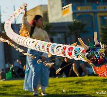 Spring Festival! by vasu