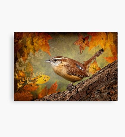 Wren in Autumn Canvas Print