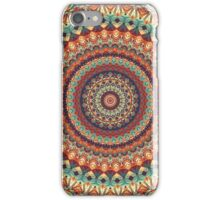 Mandala 160 iPhone Case/Skin