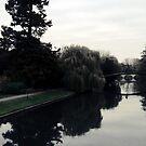 Cambridge VI by biddumy