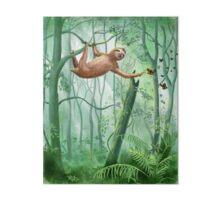 Sweet Sloth and Butterflies Art Board