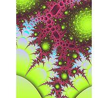 Micro Vegetation Photographic Print