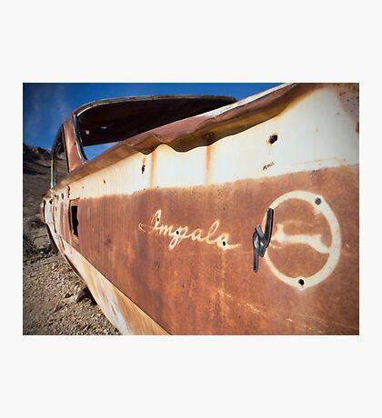 Desert Impala Photographic Print