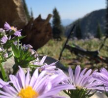 Mountain Flowers and Bikes Sticker