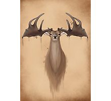 Megaloceros giganteus ( Irish elk / giant deer) Photographic Print