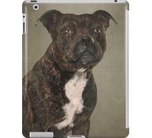 Staffordshire Bull Terrier Portrait iPad Case/Skin