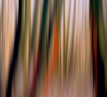 Autumn Abstraction by FelicityB