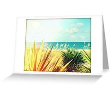 Captiva Island II Greeting Card