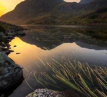 Tryfan Mountian  by Darren Wilkes