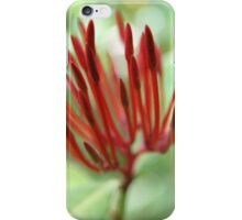 Red buds - 2011 iPhone Case/Skin
