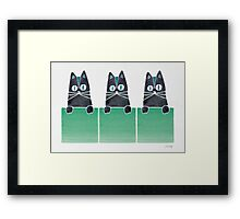 Cats in Boxes Framed Print