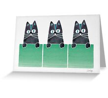 Cats in Boxes Greeting Card
