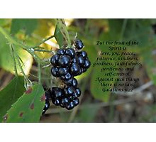 Fruit of the Spirit card Photographic Print