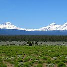 Three Sisters Mountains by gcampbell