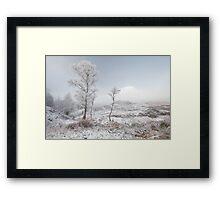 Glen Shiel Misty Winter Trees 2 Framed Print