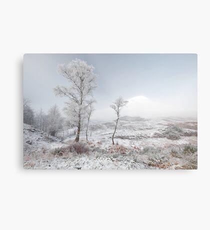 Glen Shiel Misty Winter Trees 2 Metal Print