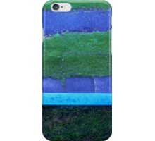 The Blue Bench iPhone Case/Skin