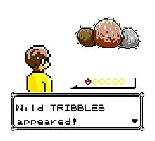 Wild Tribbles Appeared! Photographic Print