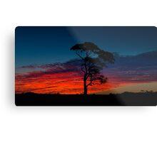 Bush at Sunset in Western Australia Metal Print