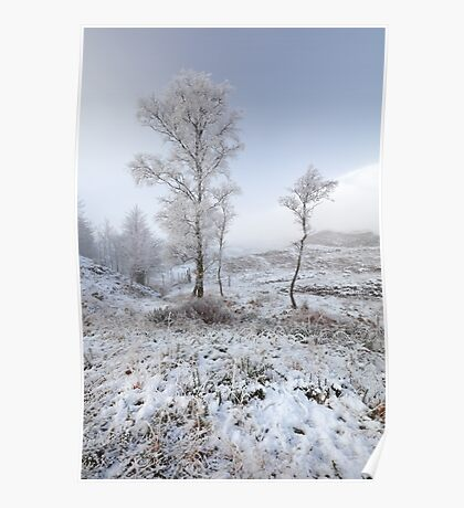 Glen Shiel Misty Winter Trees Poster