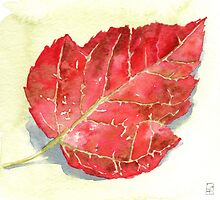 Red Autumn Leaf - watercolours by Gee Massam