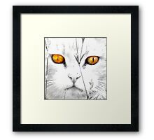 CC Serenity (Always in my memory) Framed Print