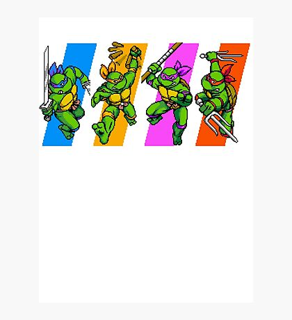 TMNT Turtles in Time Characters Photographic Print