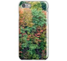 Autumn on the Hudson iPhone Case/Skin