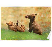 Cubs at Play Poster