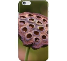 The seeds of another generation iPhone Case/Skin