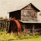 Hamrick's Grist Mill  by Lisa Taylor