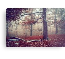 First Snow in Fall Woods Metal Print