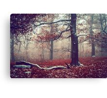 First Snow in Fall Woods Canvas Print