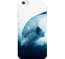 Napolean of the Red Sea iPhone Case/Skin