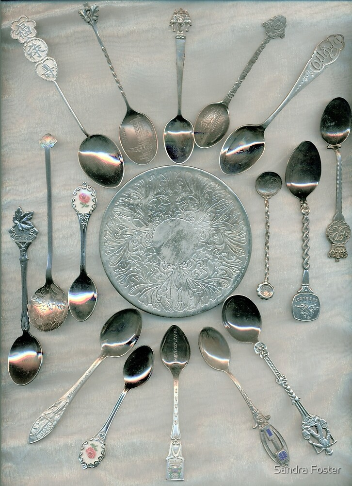 Spoon Collection by Sandra Foster