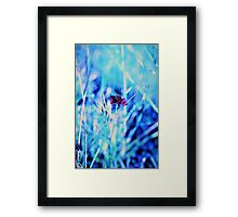 Field of Colours #2 Framed Print